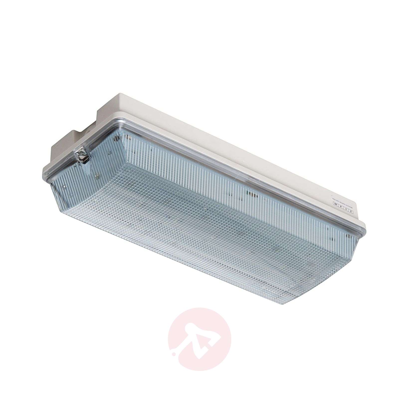 Lampa ewakuacyjna LED Frost-Lux do-30degreeC-1528022-01