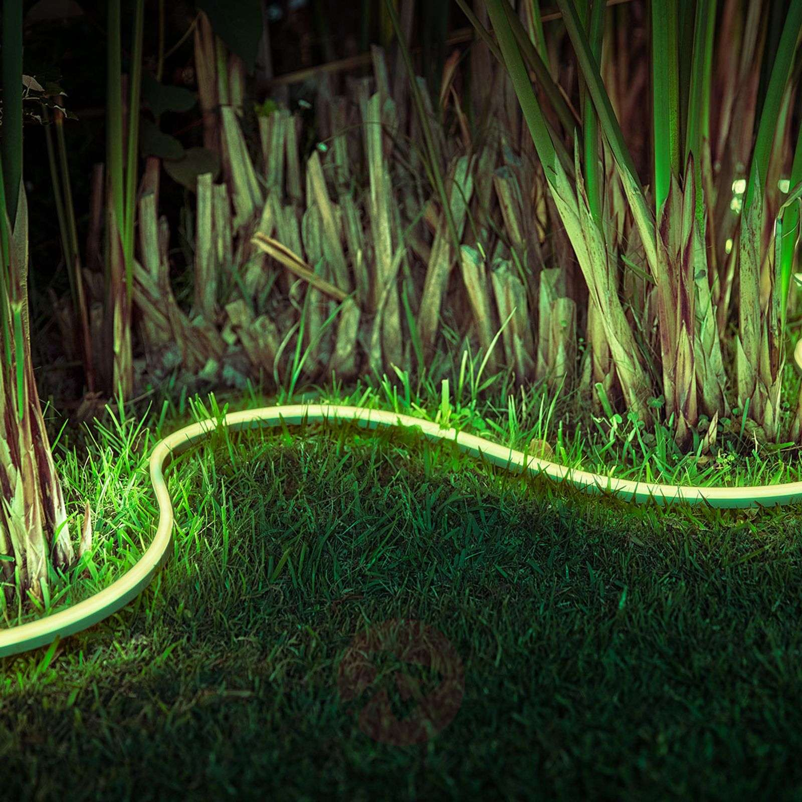 Philips Hue Outdoor Lightstrip White and Color Amb.-7534082X-01